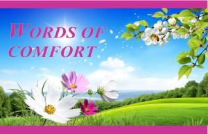 word-of-comfort-cover